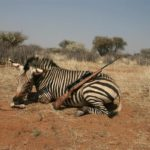 NAMIBIA LUXURY HUNT DSC00103